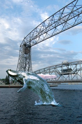Whale Watching In Northern Michigan, Yes It's Real